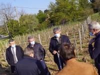 REGIONALES - Gilles Platret s'est rendu dans les vignes à Prissé