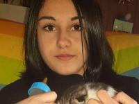 Chloé, 14 ans, sauve un petit chat jeté par la fenêtre d'une voiture