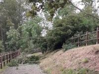La Voie Verte est fermée à certains endroits à cause de chutes d'arbres