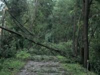 Après les violents orages de samedi denier : le point de situation en Saône-et-Loire