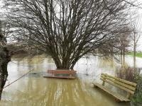 Bonne nouvelle, décrue relevée en amont de Chalon sur Saône.