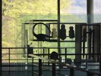 Réouverture annoncée pour le 19 mai au Musée de Bibracte