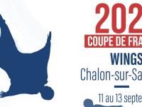 Le Wingsuit de France se donne rendez-vous ce week-end à l'aérodrome de Champforgeuil