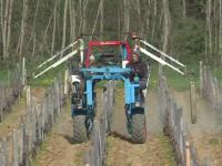 A Clessé, dans le sud Saône et Loire, les viticulteurs aspergent les vignes d'une tisane contre le froid