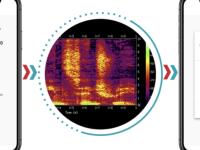 CORONAVIRUS - Une application qui détecte le virus dans la voix ?