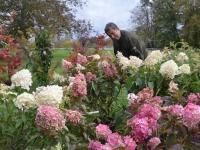 Malgré le COVID, les 17è Journées des Plantes & Arts du Jardin du Château de la Ferté se tiendront bien ce week-end