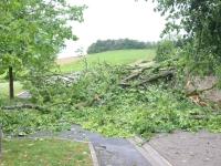 Le bureau de la Sécurité civile et de la défense de Saône et Loire annonce des vents jusqu'à 110 km/h