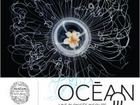 A noter sur vos agendas - « Océan, une plongée insolite » à Digoin
