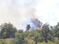 Plusieurs départs de feu sur les hauteurs de Mercurey et Saint Martin sous Montaigu
