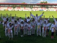 Le Judo Club Chalonnais impatient de faire la rentrée!