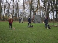 Le club canin de Châtenoy-le-Royal est de nouveau ouvert