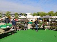 Vente de plants et de légumes par ESAT PEP 71 au marché de Saint Rémy