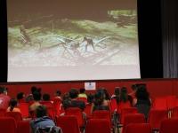 ̏ Place à l'été˝, des actions, des animations et du cinéma pour les San Rémois(es).