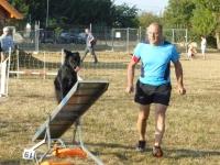 Concours d'agility le dimanche 12 septembre à Fontaines