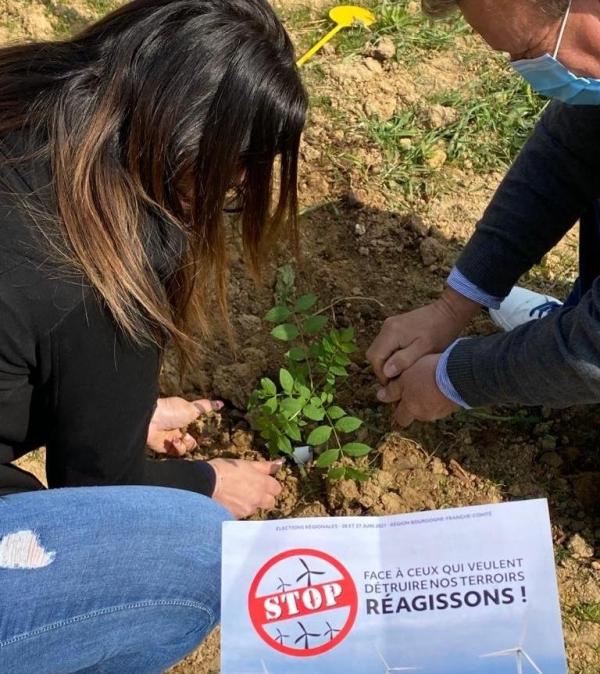 REGIONALES -  Les candidats du Rassemblement National ont planté des arbres contre les éoliennes