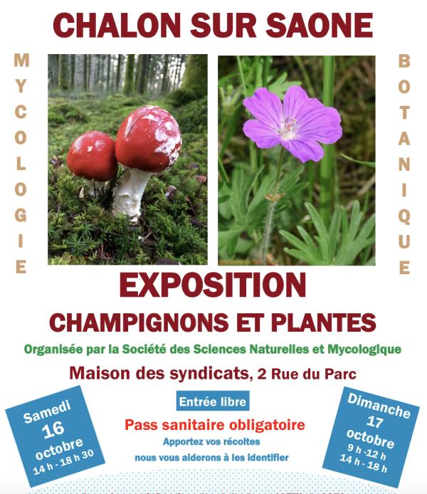 La Société des Sciences Naturelles & Mycologique de Chalon-sur-Saône expose les 16 et 17 octobre