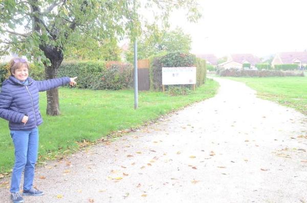 CERISIERS A LUX - L'association Sauvons Les Cerisiers répond à Stéphane Hugon, maire de Lux