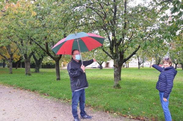 A Lux, les opposants à l'abattage des cerisiers demandent la révision de la parcelle au PLUI