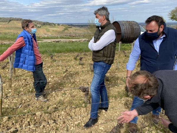 REGIONALES - Gilles Platret est venu sur les coteaux de Montagny prendre la mesure de la situation face au gel de printemps