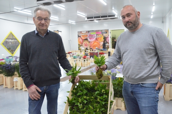 A Châtenoy en Bresse, la SODIF joue la carte de la révolution chez les cueilleurs de muguet