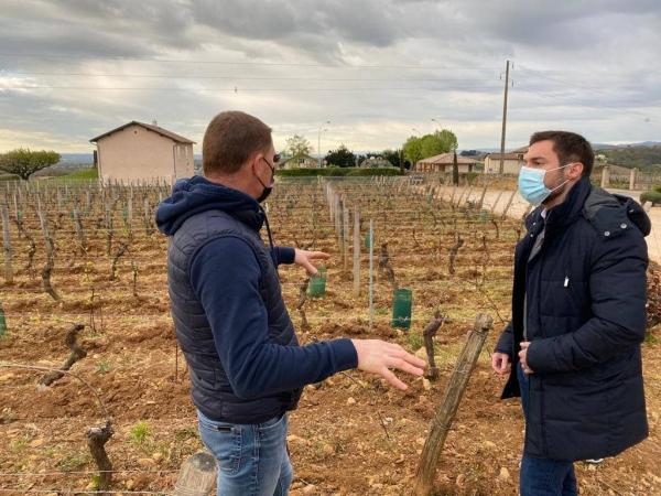 REGIONALES - Julien Odoul en Saône-et-Loire pour soutenir les viticulteurs