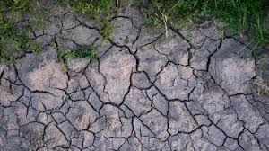 Une nouvelle période de sécheresse estivale se profile en Saône et Loire