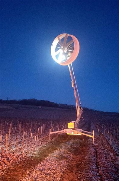 Activité nocturne inhabituelle dans certaines vignes givrotines
